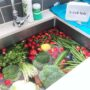 Cleaning-Fresh-Produce